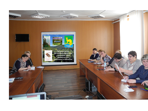 Итоги работы, эффективная деятельность библиотек Мотыгинского района: от реализованных  планов – к новым идеям.