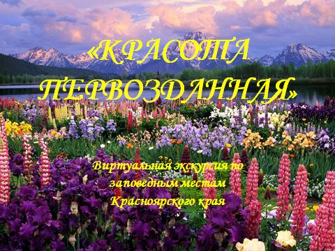 Виртуальная экскурсия по заповедным местам Красноярского края